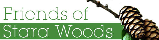Friends of Stara Woods